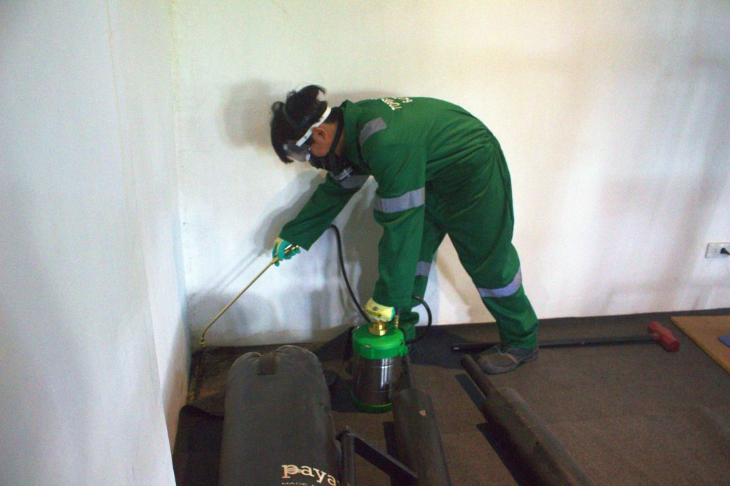 photo of Ceptiva Powder being applied