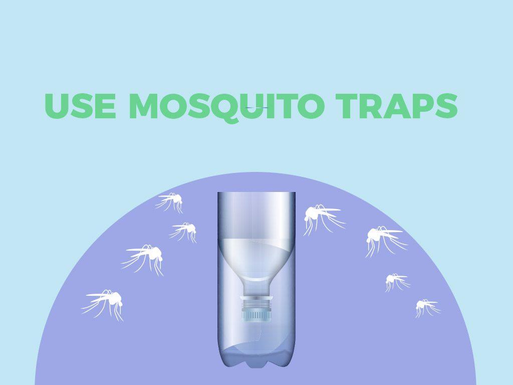 Use mosquito traps