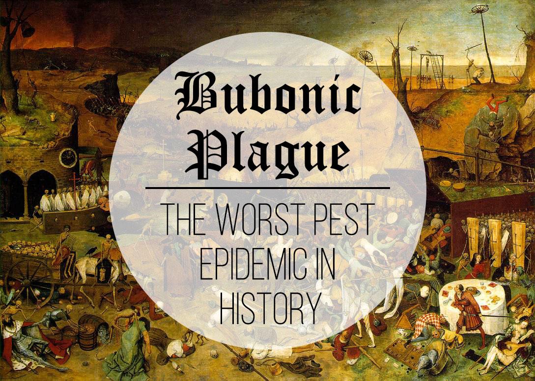 TopBest - Bubonic Plague