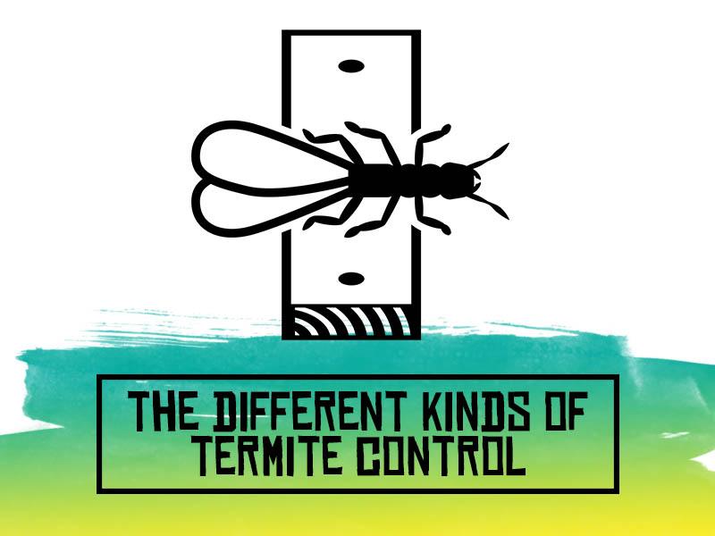 TopBest - Termite Control