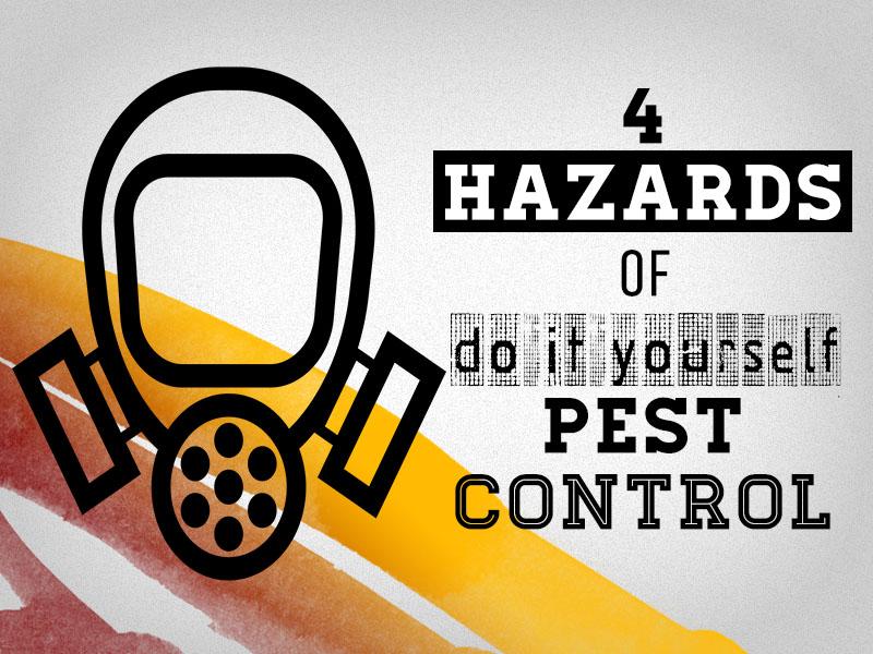 TopBest - 4 Hazards Of DIY Pest Control