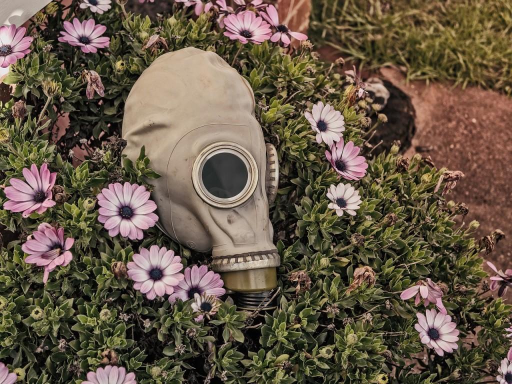 entomological-warfare-gas-mask