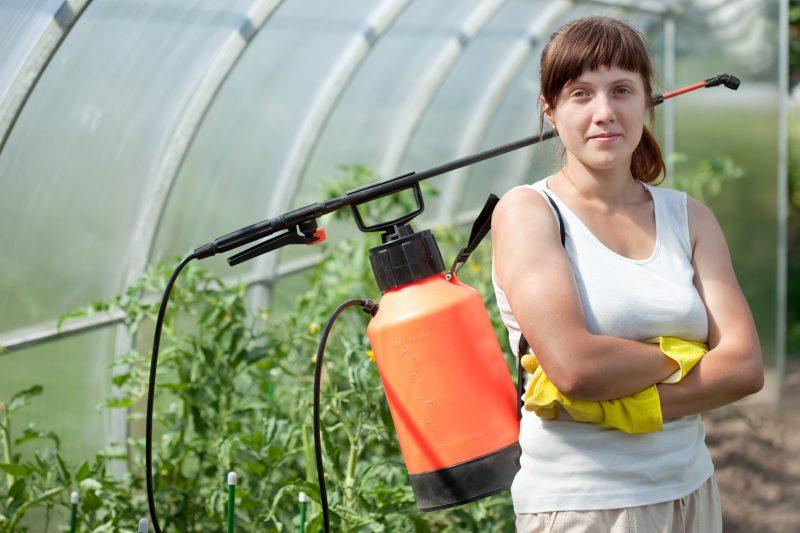 Female gardener with knapsack garden spray
