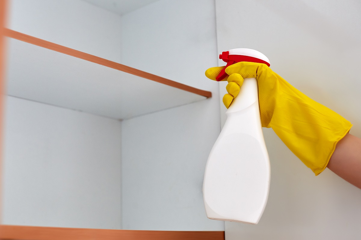 5 Pest Control Mistakes You Need to Stop Doing