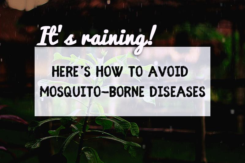 Avoid-Mosquitoe-borne-Diseases-TOPBEST