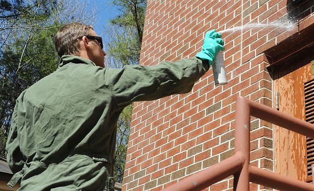 8 Reasons Why Professional Pest Control Services Is Worth The Money