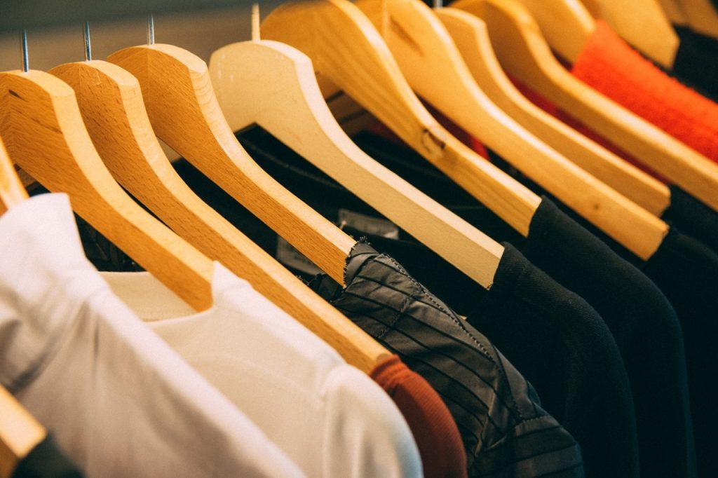 Pests That Destroy Clothes