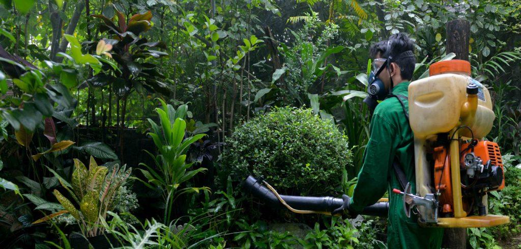 Pest Control Philippines